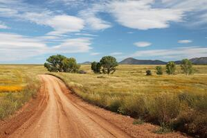 countryside-dirt-road-grass-154800